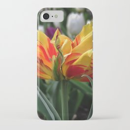 fiery tulip - bright yellow and red close-up iPhone Case