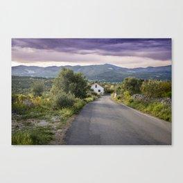 Empty road Canvas Print