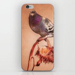 Pigeon Sunflower Autumn iPhone Skin