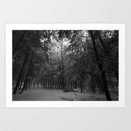 In the Woods, I do not Exist Art Print