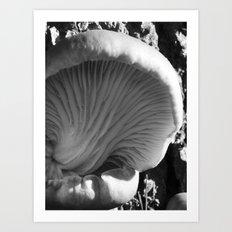 mushroom gills III Art Print