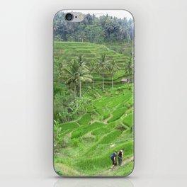Terraced Fields iPhone Skin