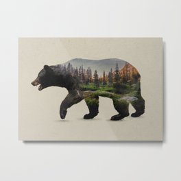 The North American Black Bear Metal Print