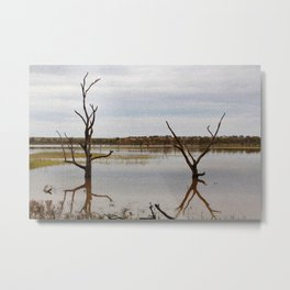 Dead Trees in the River Metal Print