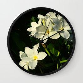 Glass House Plumeria Wall Clock