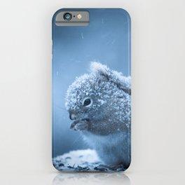 Snowstorm Squirrel iPhone Case