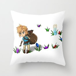 Rupee Collection WB Throw Pillow