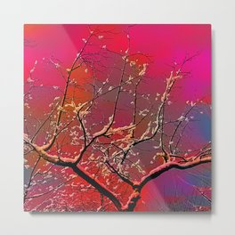 Branch on a background of the sky Metal Print