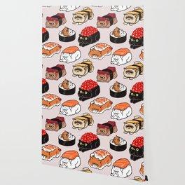 Sushi Persian Cat Wallpaper