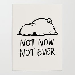 Not Now Not Ever Poster