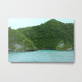 Micronesia Jungle's edge Metal Print