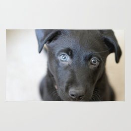 Puppy Face Rug