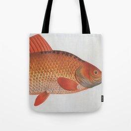 Vintage Illustration of a Goldfish (1785) Tote Bag