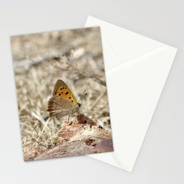 Small Copper Stationery Cards