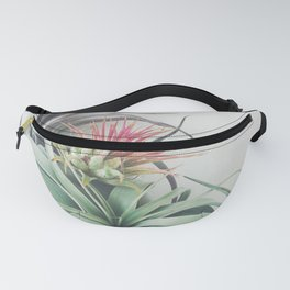 Air Plant Collection II Fanny Pack