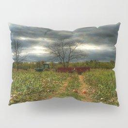 the pumpkin patch Pillow Sham