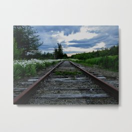 Returning Metal Print