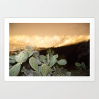 View from Mulholland Drive Art Print