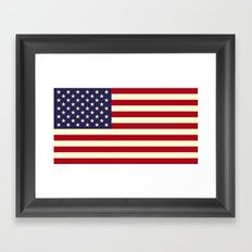 Flag of the United States of America Framed Art Print