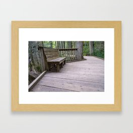 A Place to Reflect Bench in A Forest in Glacier National Park Framed Art Print
