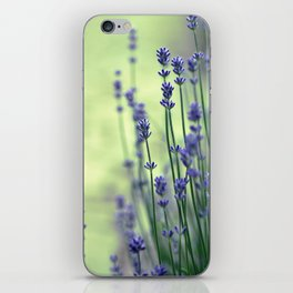 Lavender iPhone Skin