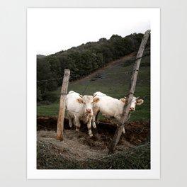 Prairie en France Art Print