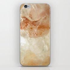Salt of Life iPhone & iPod Skin