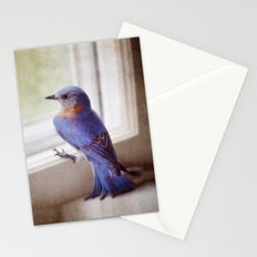 Bluebird in the kitchen Stationery Cards