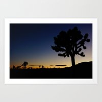 Late night - Joshua tree Art Print