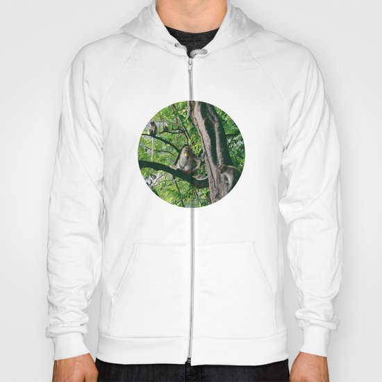 Mountain Monkeys Hoody