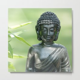 Find Buddha calm Metal Print