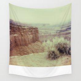 Canyonland National Park - Polaroid Wall Tapestry