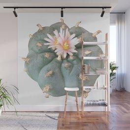 "Peyote ""Lophophora Williamsii"" Wall Mural"