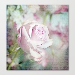 Scripted Rose Canvas Print