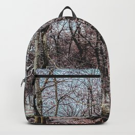 Red leaves and freckles. Can I call you redheads, dear trees? Backpack