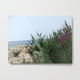 Untitled, Maumee Bay State Park Metal Print