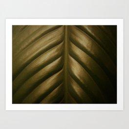 Peace Lily, dark Art Print