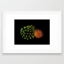 Efflorescence 29 Framed Art Print