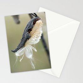 Soft Milkweed Stationery Cards