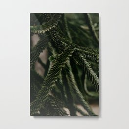 Cactus lover  Metal Print