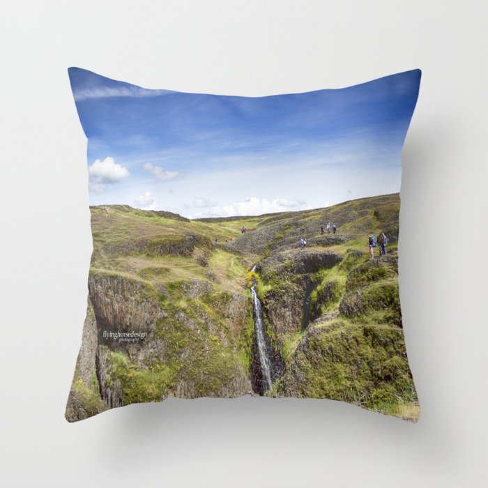 Table Mountain - Superbloom/Waterfall 2017 Throw Pillow