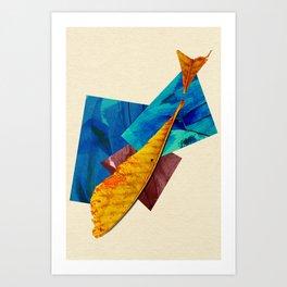 Natural Balance - The Fish Art Print