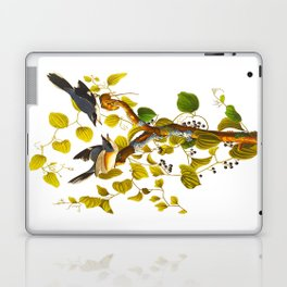 Loggerhead Shrike Bird Laptop & iPad Skin