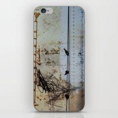 DRESSED LANDSCAPE VI iPhone & iPod Skin