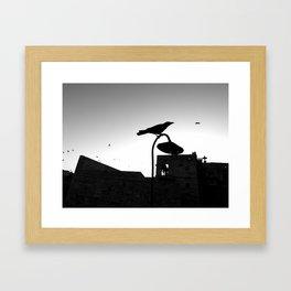 Rishikesh birdie Framed Art Print
