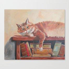 Red cat on a bookshelf Canvas Print