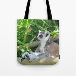 Cute and relaxed Ring-tailed lemur (lemur catta) Tote Bag