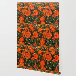 Orange Fall Mums Wallpaper