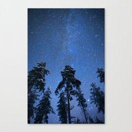 Shimmering Blue Night Sky Stars Canvas Print