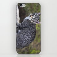 hiking iPhone & iPod Skins featuring Hiking Friend by Jeffrey Filman
